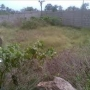 2PLOTS OF LAND FOR SELL