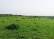 600 hectares of land available for sale at NGN500 000 per plot in Badagry.