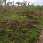 3 plots of land for sale in new festac extention abule ado