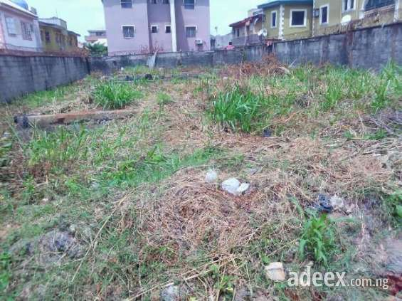 Extremely clean land for sale. guaranteed